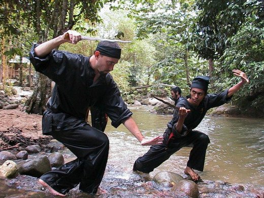 Many Silat fighters take great pride in the many influences of their style as well as the many variants of it.