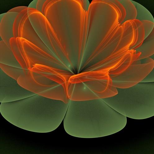 The Heavens are a Thousand Fold Lotus