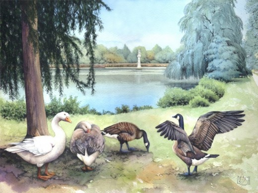 """Roath Park Lake"" watercolour by Helen Lush"
