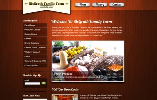WordPress Site Example #3