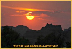 Why Not Have a Black Hills Adventure?