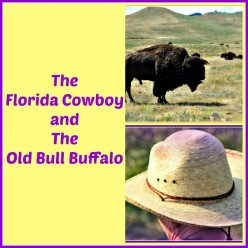 What  Happens When a Cowboy Meets a Buffalo on the Prairie?