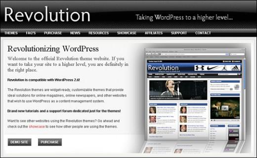 WordPress Site Example #5