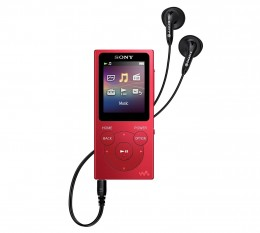 For around $55 to $80 (depending on capacity) the Sony Walkman is probably your best option under $100. It's easy to use, looks great, and is big enough that it won't get lost.