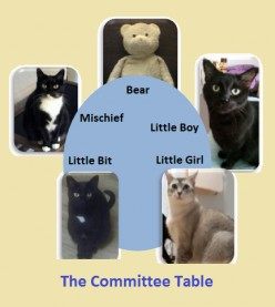 The Committee Meeting