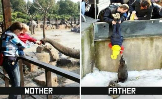 #9 Zoo