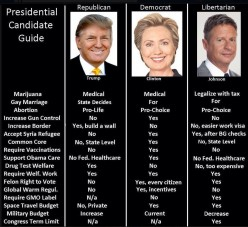 How to Vote for the Best Presidential Candidate