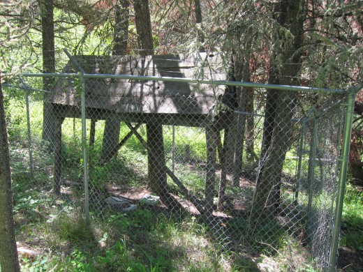 Did the Unabomber perhaps used this homemade structure as a meat drying rack?