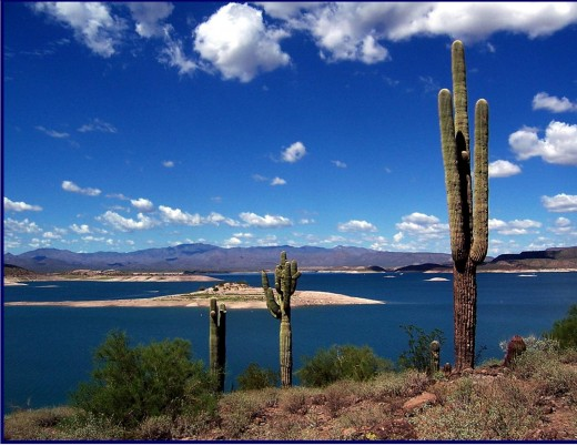 Protect and Enhance Lake Pleasant