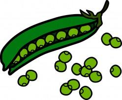 Peas Afloat