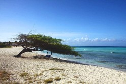 Best Time to Go to Aruba: When is Hurricane Season?