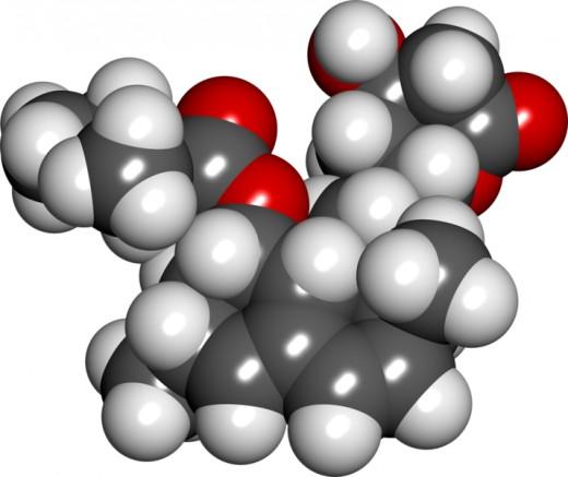 A lovastatin molecule 3d model