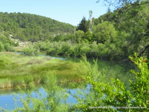 Peacefull flow of the river Karishnica