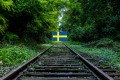 5 Reasons to learn Swedish That May Inspire You