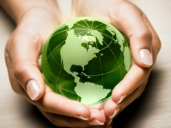 The Environment and Environmentalism in the Global Political Economy