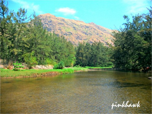 The relaxing view in between the camp site and the beach with the flowing shallow water.