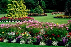 Secrets to Successful Landscaping