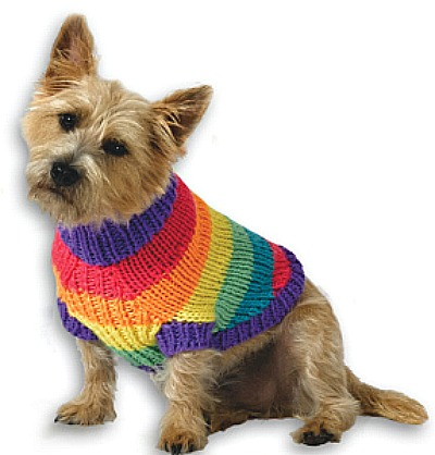 Directions To Make Knitted Sweater For Dogs