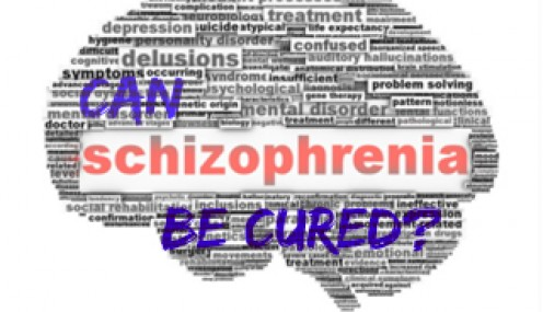 The Schizophrenic Mind