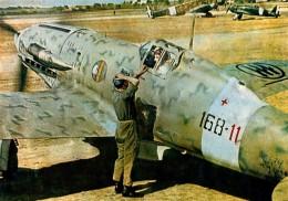 C.202 of Regia Aeronautica 168ª Squadriglia, 54° Stormo CT c.1943.