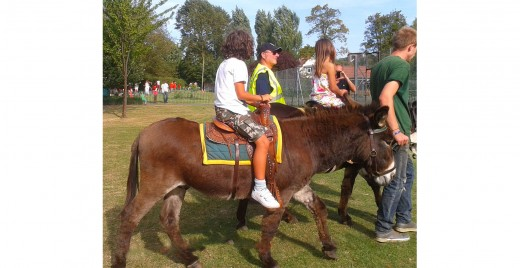 Donkey Rides at a Summer Fair in London