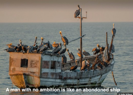 Sea gulls on an abandoned boat in Mexico