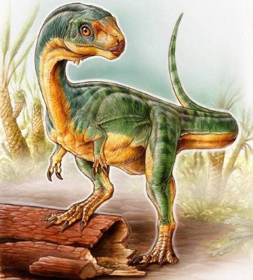 Chilesaurus as depicted by Gabriel Lio.