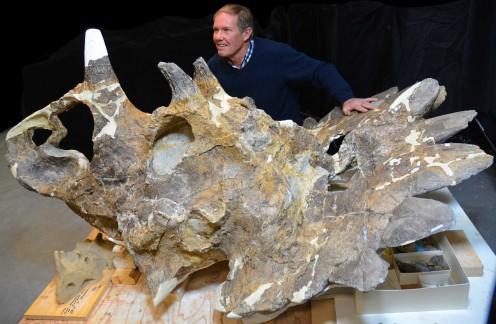Regaliceratops skull with its discoverer, paleontologist Peter Hews.