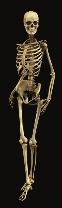 Bone Health: Consequences of Calcium Deficiency, How To Keep Your Bone Healthy?