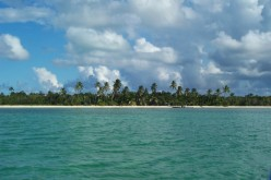 A Trip to Andros Island in the Bahamas