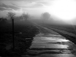 The long and winding road of bipolar disorder