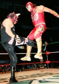 CMLL Tuesday: Drone Strike
