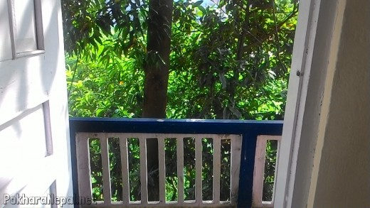 A tiny balcony of Hotel Plaza Annapurna with a garden view