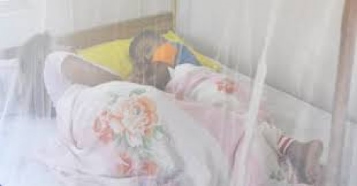 Mosquito treated insecticide net