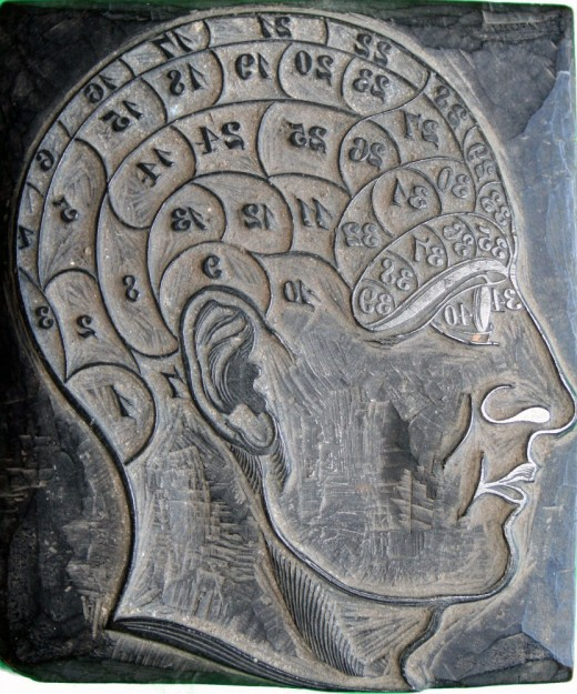 Wooden Phrenology Head used by George Burgess