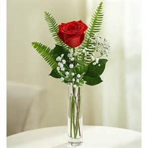 A single perfect rose ...