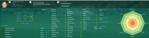 FM17 Profile Screenshot of Janssen