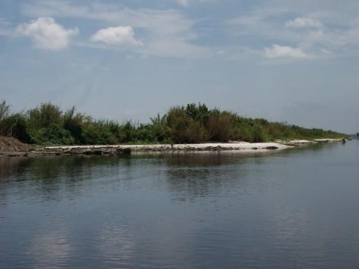 A Rock Shore Line of Lake Okeechobee