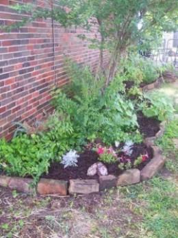 side yard planter area