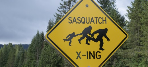Bigfoot Myths, Theories, and Sightings