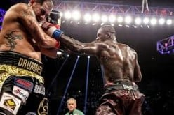 Deontay Wilder hit Eric Molina with every punch in the book before getting the stoppage win while defending his heavyweight title.