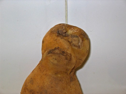 A potato with a mummy face