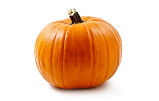 A Pumpkin that is used to make the famous Pumpkin Cream Cheese muffin from Starbucks