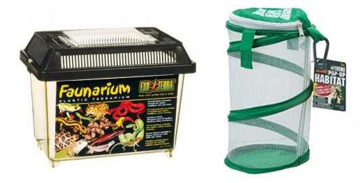 Classic plastic cage and pop-up mesh cage. These reusable vivariums are ideal if you want to keep the insect for longer, or make a habit of keeping weekend pets.
