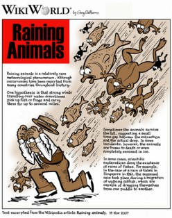 Animal Rains: a metheorogical phenomenon