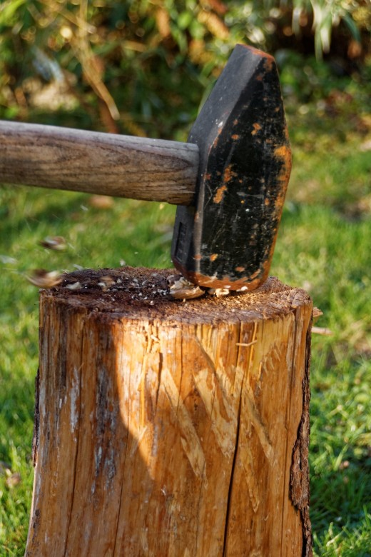 Striking a hammer blow leaves a walnut in tiny pieces.
