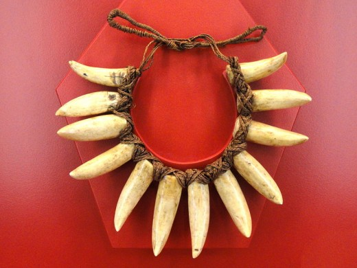 Necklace made of sperm whale teeth, Fiji, c 1895.