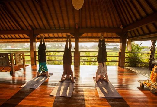 Orleans Yoga