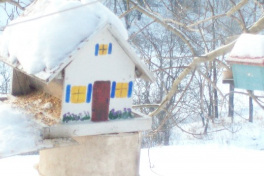 My Uncle Raymond made this bird feeder. It's an heirloom put to good use through a snowy winter.