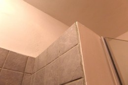 This is the only pic I have of the shower's grout. Other areas were worse.